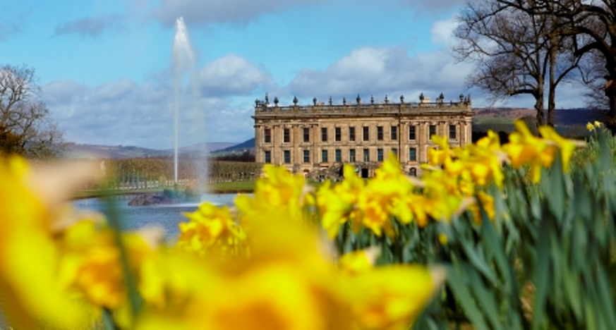 chatsworth flower show